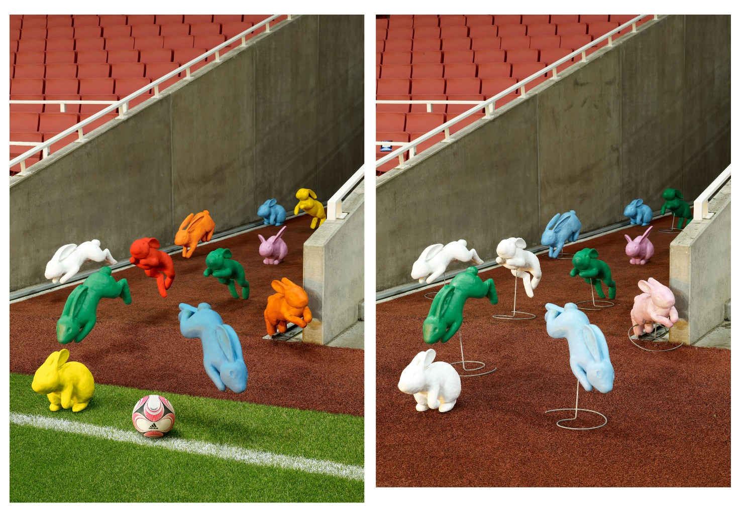 bunnies-football_agency_fallon 2