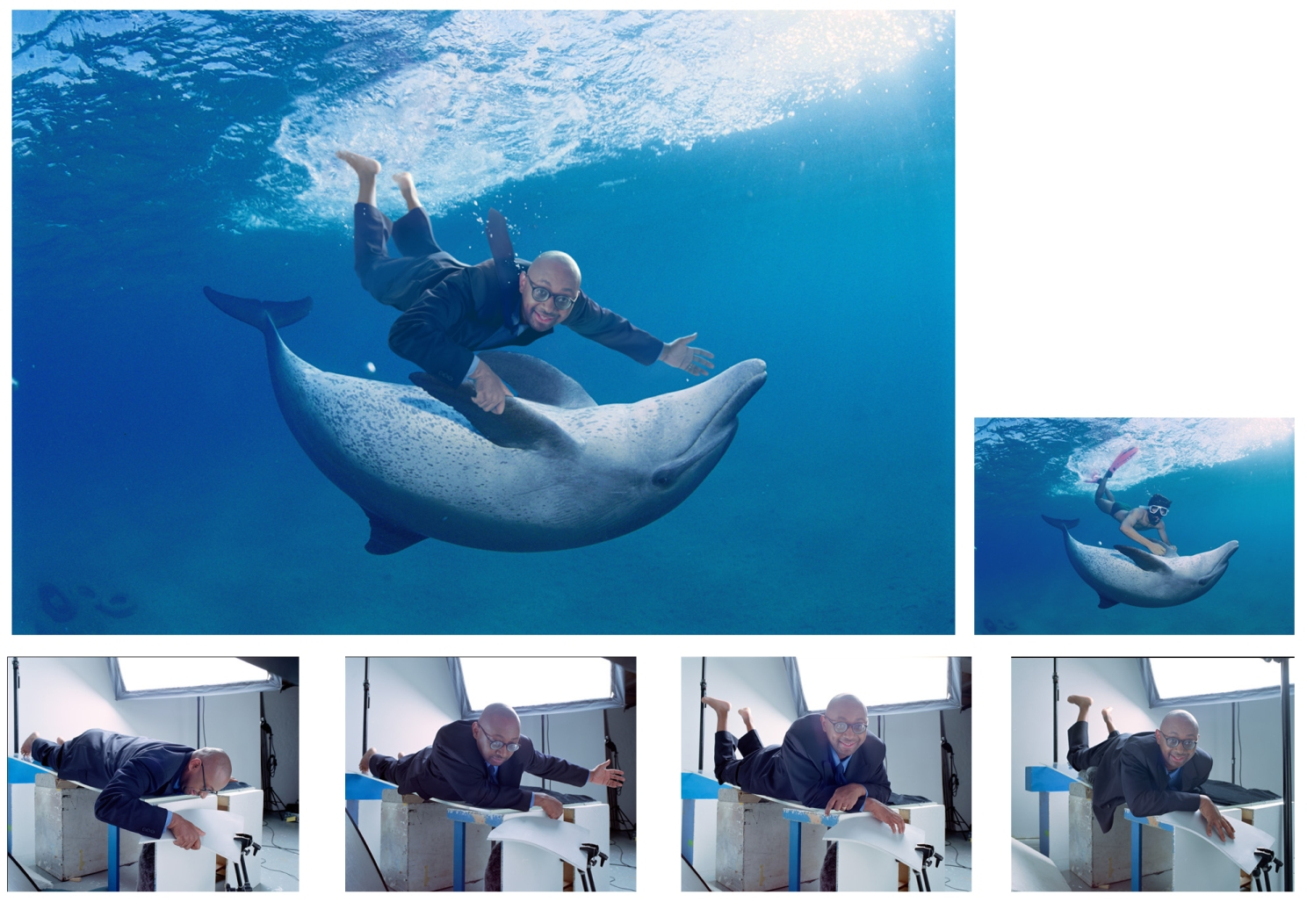 halifax-dolphin_agency_dlkw 2